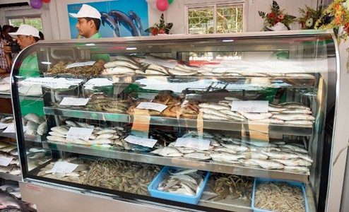 Bhubaneswar to get 26 more Chilika Fresh Outlets all over for Selling Fish