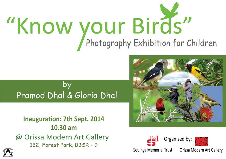 know your birds exhibition for children