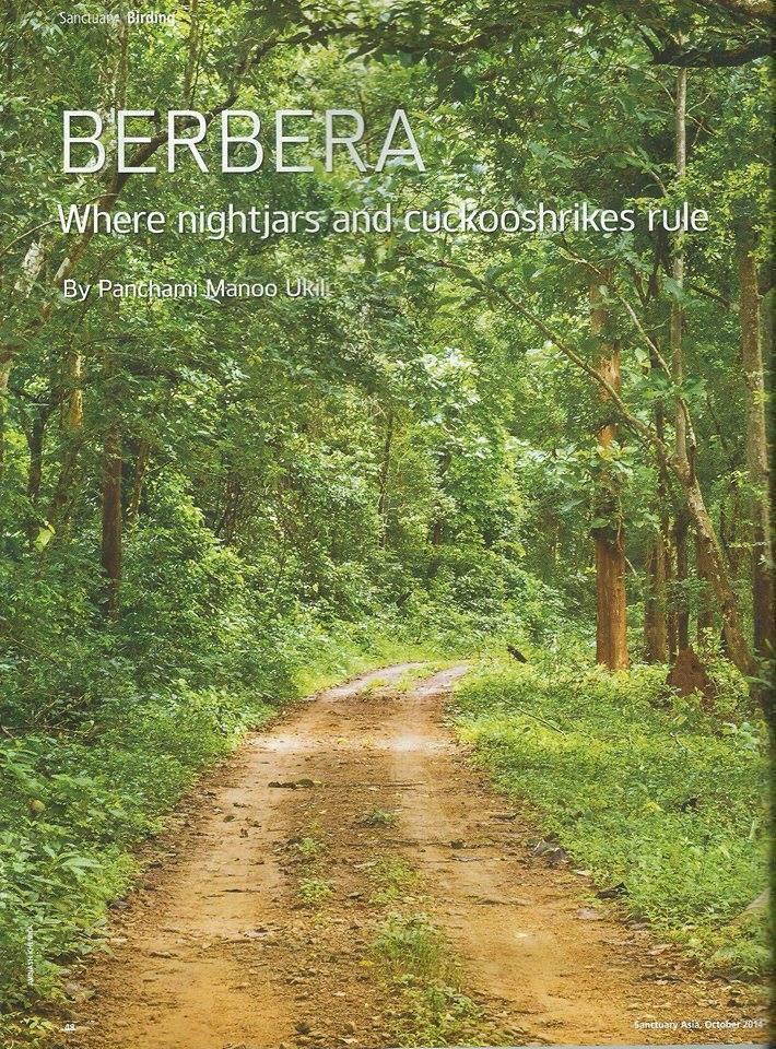 berbera forest near bhubaneswar
