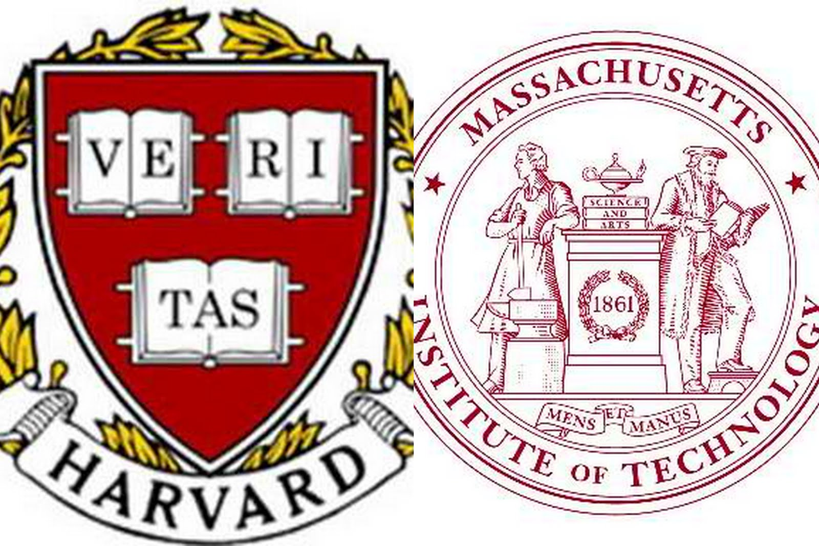 harvard-mit collage