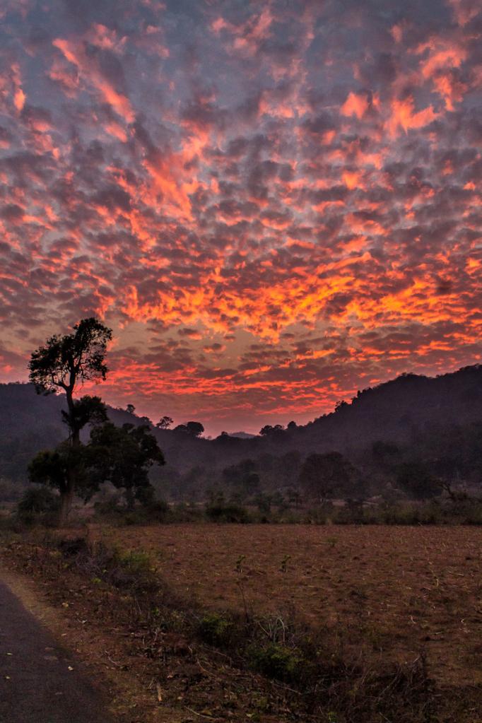 Mahendragiri Odisha Bhubaneswar Buzz 3