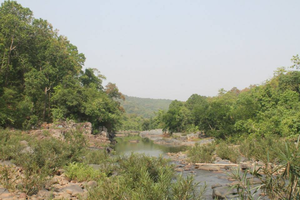 Similipal National park bhubaneswar buzz 5