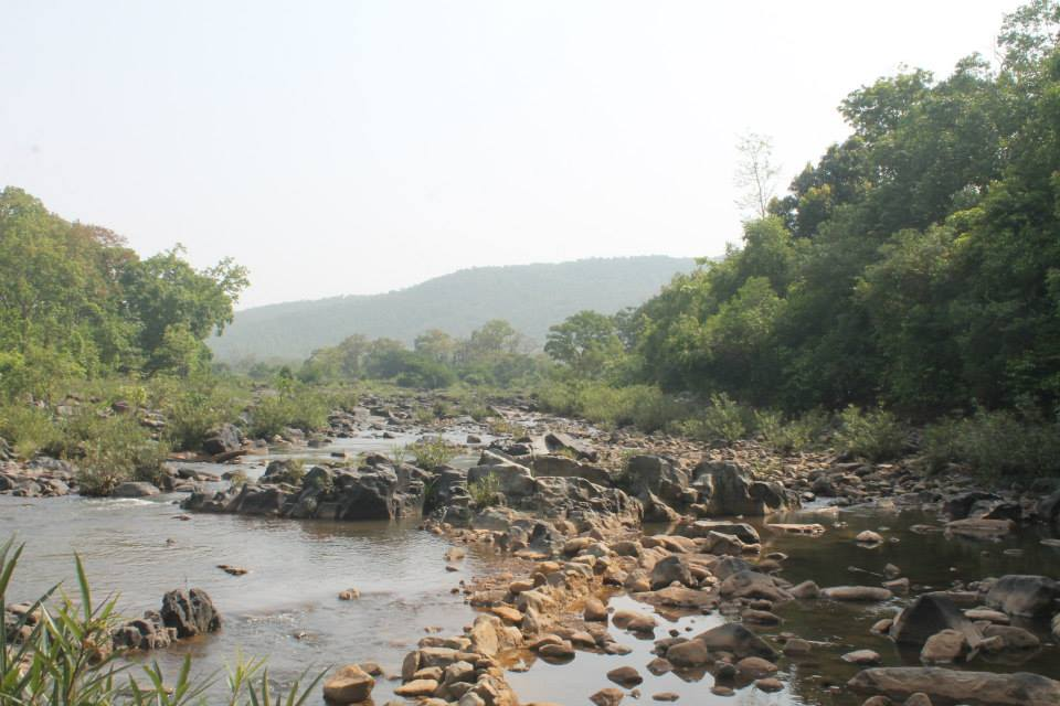 Similipal National park bhubaneswar buzz 6