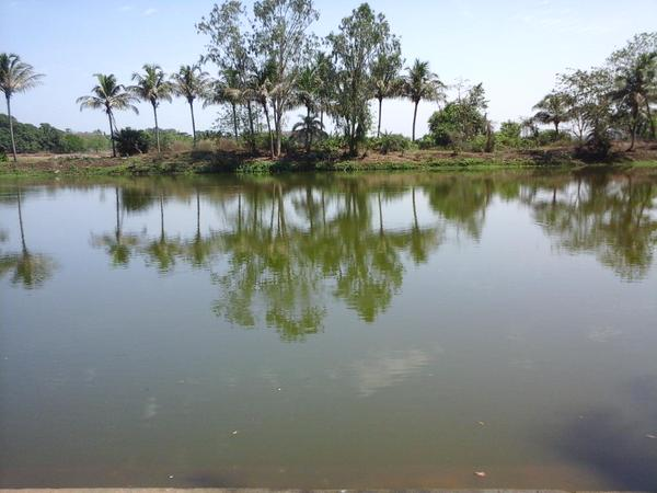 somanath temple bhubaneswar buzz 3