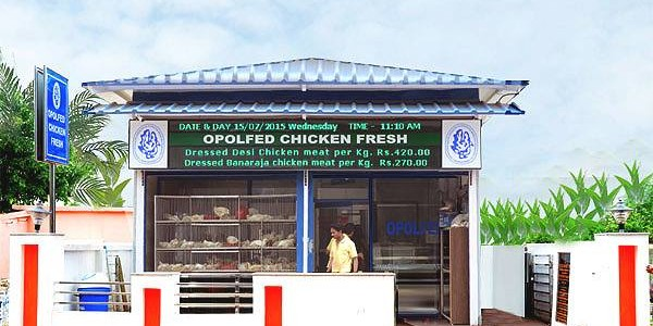 53 more Chicken Fresh Outlets to come up all over Odisha