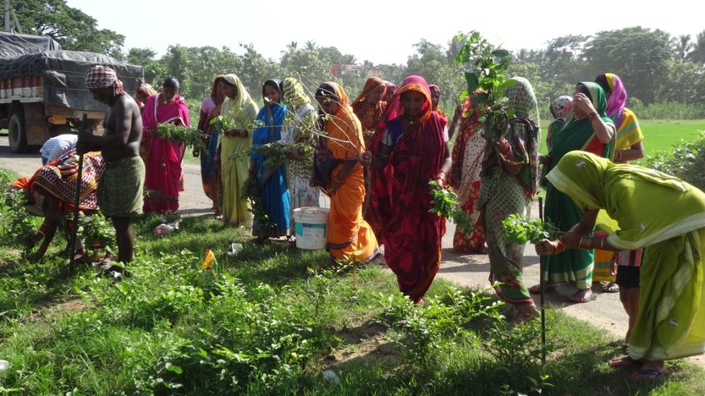 odisha whistling group better india