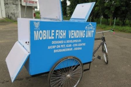 Bhubaneswar based CIFA designs advanced Fish Vending Cart