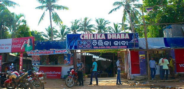 Chilika Dhaba Features in this article of top 13 in the country by India Times