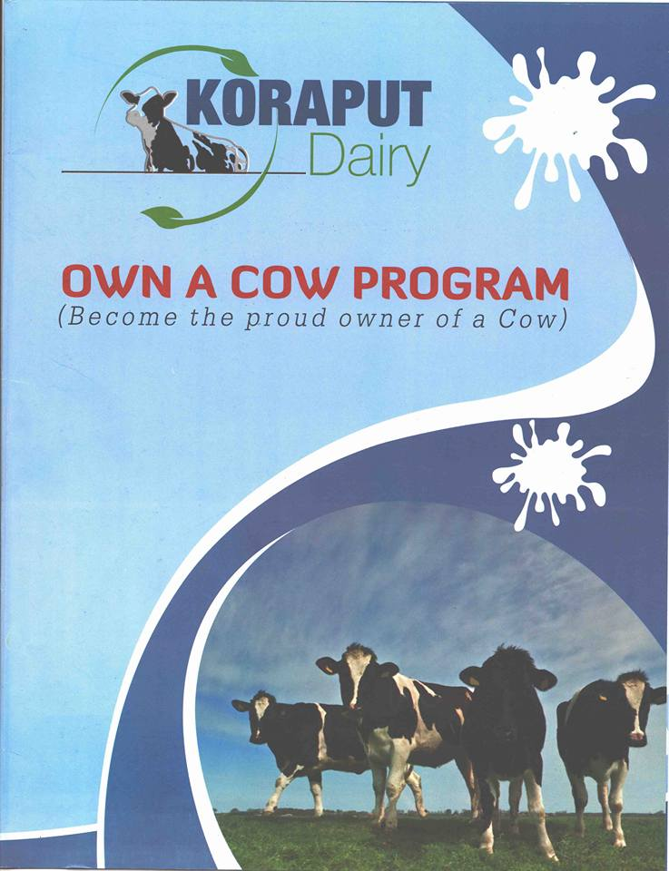 own a cow program koraput diary bbsrbuzz
