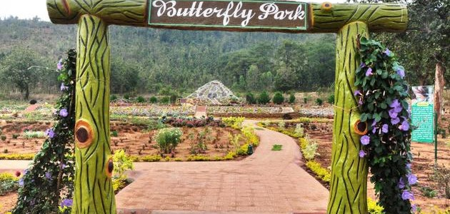Daringbadi : The kashmir of Odisha gets a Butterfly park