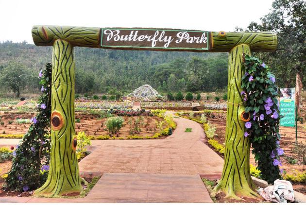butterfly park daringbadi kashmir of odisha bbsrbuzz