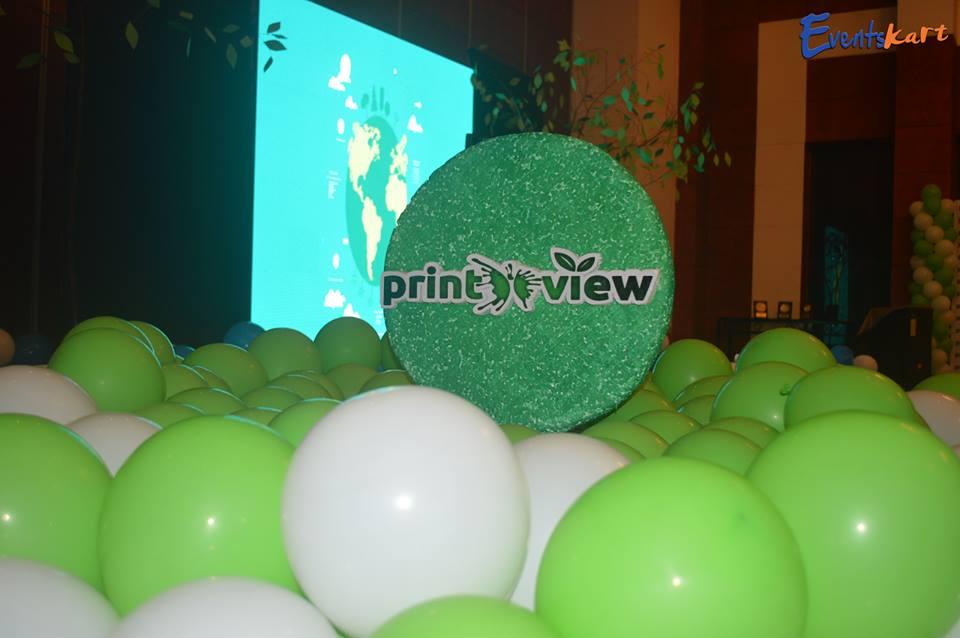 printview bbsrbuzz startup