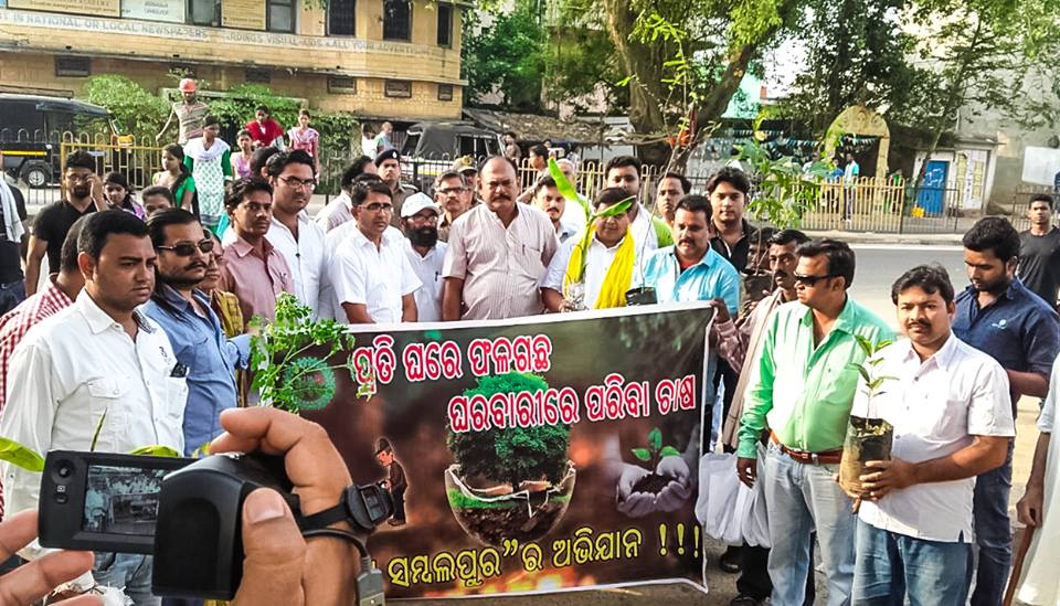 Yuva Sambalpur One fruit plant campaign