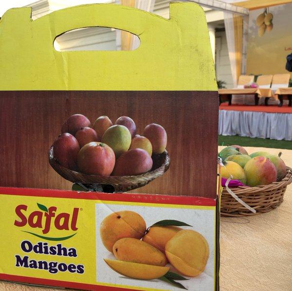 safal odisha mangoes marketing bbsrbuzz