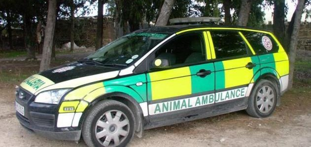 Ambulance Service for Animals in Odisha to start from October