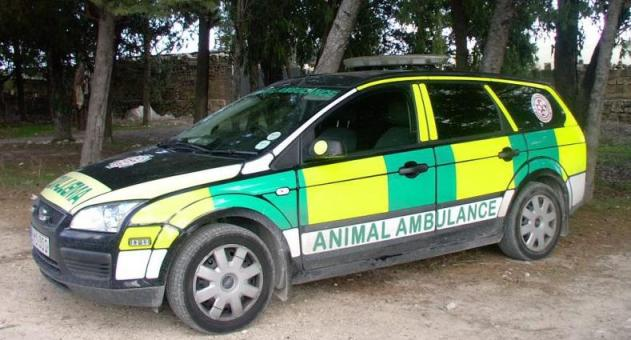 ANIMAL AMBULANCE in malta 2