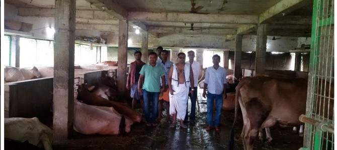 From IIT Kharagpur Alumni, to IT companies, to now Dairy Farm in his village in Kendrapada