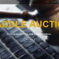 Paddle auction bhubaneswarbuzz