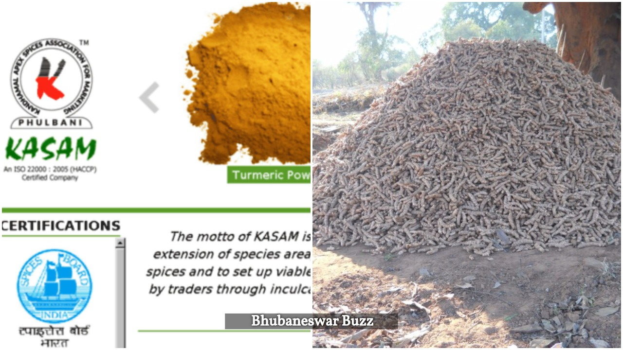 kandhamal apex spices association bbsrbuzz