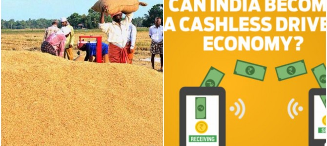 Demonitisation : Paddy Procurement Goes Cashless in Ganjam District