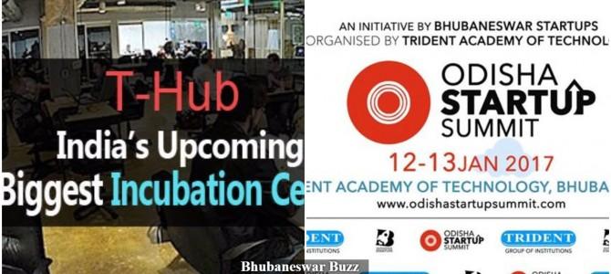 Odisha thinking of Startup park similar to T-hub in Hyderabad