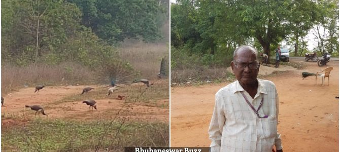 Awesome to see a group formed out of Odia Twitter People arranged Donation for Peacock man of Cuttack