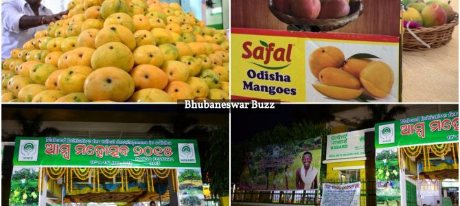 Have time this sunday? How about checking Mango Festival going on in bhubaneswar now