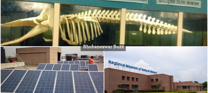 Regional Museum of Natural History bhubaneswar will soon become first museum in the country to generate 199.4 KV electricity by green energy production plant