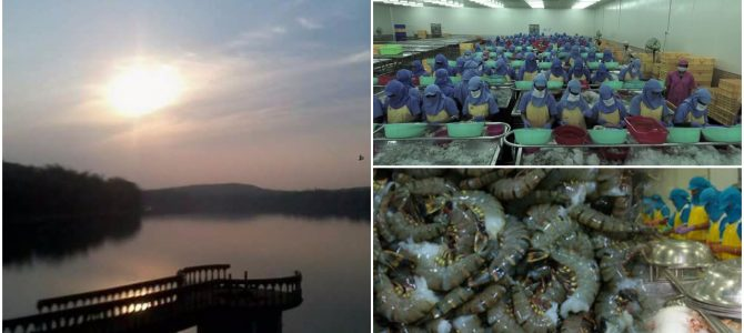 Odisha says it has received Rs 466 crore of investment proposals for Seafood park at Deras