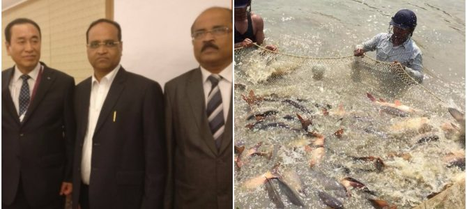 T. Prasad Rao Dora of Odisha elected as Vice Chairman of International Fisheries Cooperative Federation