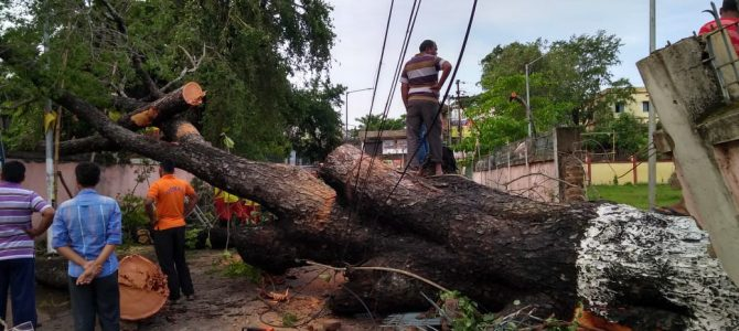 CYCLONE FANI: When The State of Odisha Was DEVASTATED! Yet Again! A blog by Nidhi Lohia