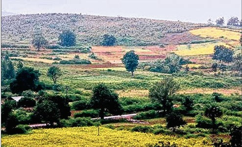 Have you seen the Kashmir of Odisha 'Daringbadi' yet?
