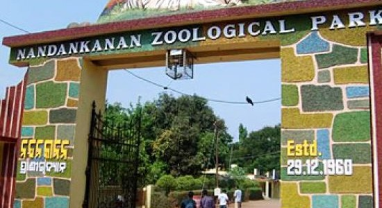 Nandankanan Zoo in Bhubaneswar reopens Nocturnal Animals Enclosure