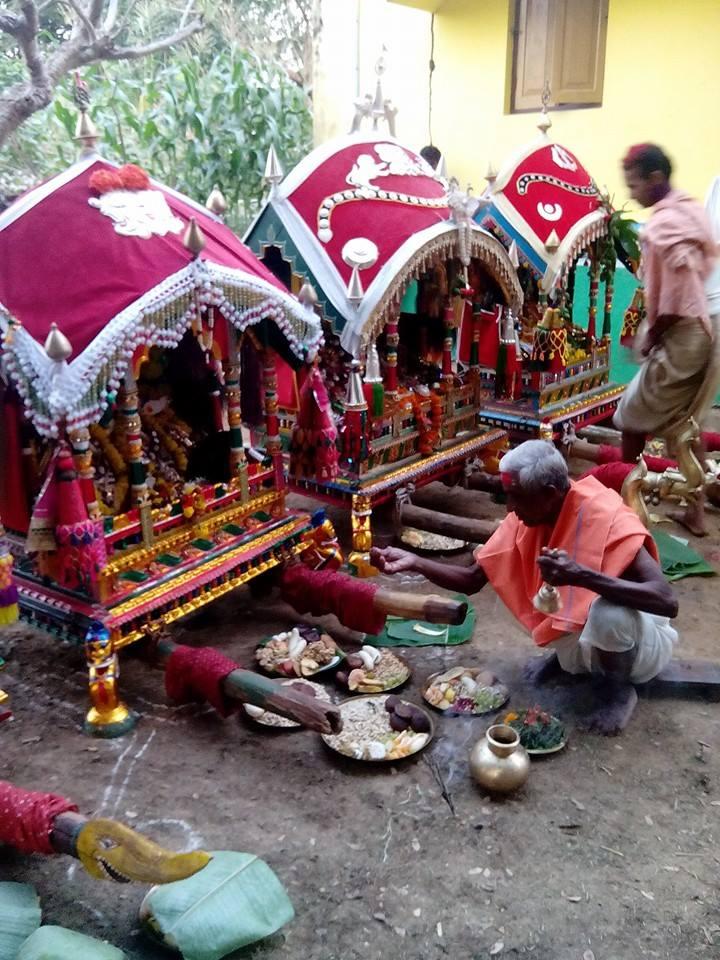 dola purnima celebration