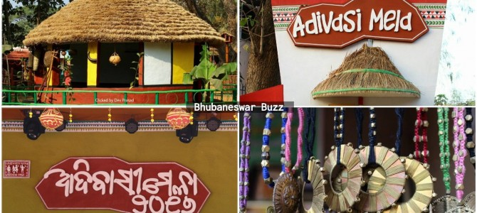 Adivasi Mela 2017 : Tribal Fair in bhubaneswar continues to catch fancy and draw crowds