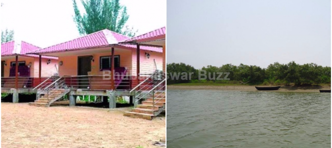 Mangrove Ecotourism project all set to start at Bichitrapur in Odisha Westbengal Border