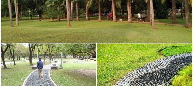 BDA plans to develop acupressure walkway in its parks starting with Biju Pattnaik park in Unit VI