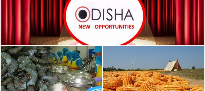 Odisha clears three investment projects worth Rs 864 crore