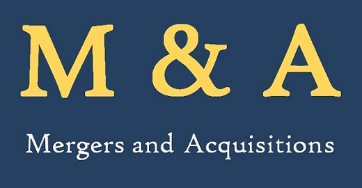 Mergers & Acquisitions: A myth or a reality for a long-term sustainable growth discussed at Stratonomics 2019 XIMB